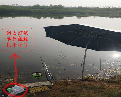 [钓鱼]大沽河垂钓,景美,鱼多,心情好